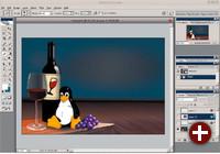Auf manche Windows-Programme wollen Linux-Nutzer nicht verzichten: Adobe Photoshop ist ein besonders prominentes Beispiel, hier in der Version CS2