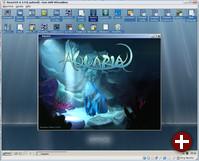 Aquaria unter ReactOS 0.3.9