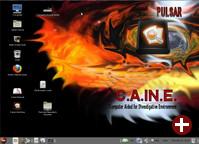 Caine in der Version 4.0