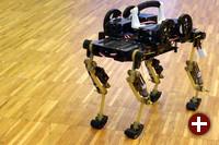 Cheetah-Cub: Roboterkatze mit ausgeklügelter Fortbewegung