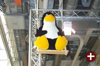 Der metergroße Tux auf der Schaukel - eine nette Idee von abas, den erfolgreichen Entwicklern der gleichnamigen Unternehmenssoftware.