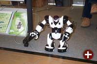 Der Sinn dieses Roboters am Millin-Stand war aus Zeitmangel nicht in Erfahrung zu bringen
