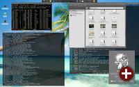 Desktop von Xfce 4.10 mit Konsolenfenstern