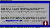 DragonFly BSD 5.0 - Wahl der Installation