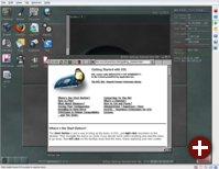 Der Desktop von DSL 3.1