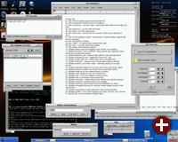 Damn Small Linux 2.1