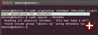 Entschlüsseln mit Live-System: Beim ersten Zugriff auf die LUKS-Partition verlangt cryptsetup das Passwort