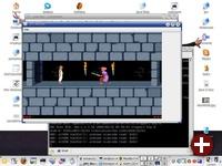 JPC unter Linux startet eine DOS-Version von Prince of Persia