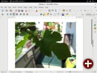 LibreOffice 5.1 Writer