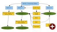 Diverse MySQL-Forks