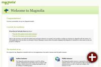 Aktualisierung einer Magnolia-Instanz