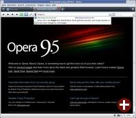 Opera 9.5 mit »Quick Find«