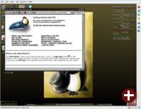 Parallels Workstation 2.2 Beta mit Damn Small Linux 3.0.1