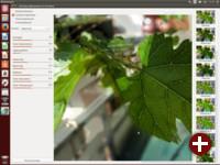Photomatix in Ubuntu 14.04 LTS