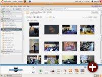 Bild_ Picasa 3.0 für Linux