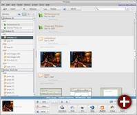 Testversion von Picasa 2.7 für Linux