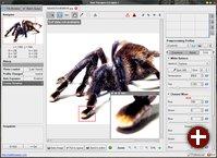 RawTherapee 3.0 Alpha1 mit neuer Oberfläche und unter der GPLv3