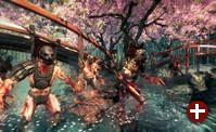 Spielszene aus »Shadow Warrior«