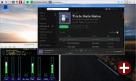 Spotify unter Debian Pixel für PC