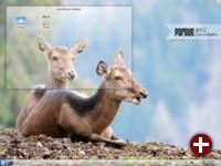Standard-Desktop von Pardus 2011.2
