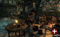 »The Elder Scrolls V: Skyrim« unter Wine