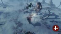 »Vikings - Wolves of Midgard«