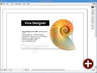 Die Oberfläche von VivaDesigner