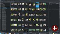 Vorschau von RAW-Dateien