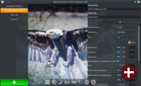 Webcamoid 8.0 unter Linux