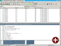Wireshark in Aktion