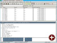 Wireshark in Aktion