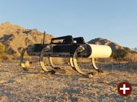 X-RHex in der Wüste