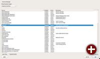 Yast: Auswahl der Dienste und Server