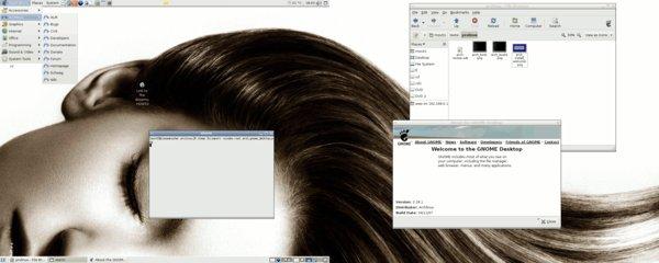 Mein GNOME-Desktop im aktuellen Arch 0.8