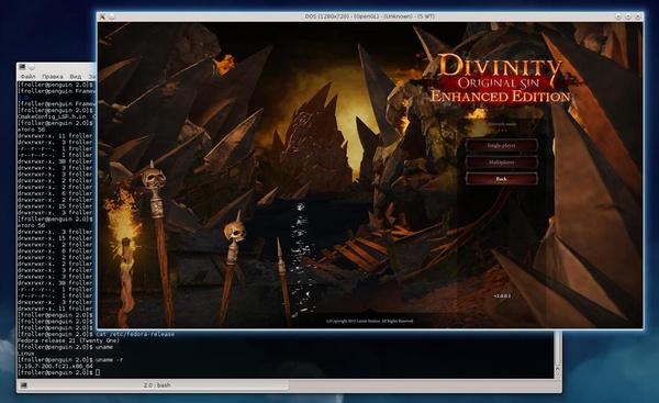»Divinity: Original Sin« unter Linux